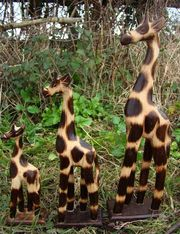Fairtrade Set Of 3 Natural Wooden Giraffe Statues